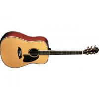 Акустическая гитара Washburn OG2 N